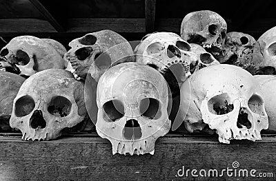 Crânios humanos nos campos da matança