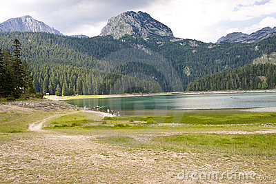 Crno lake in Durmitor - Montenegro