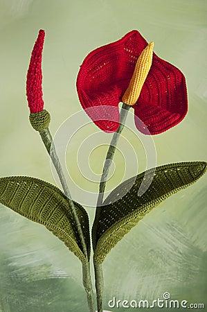 Free Crochet Flower-Anthurium- Stock Photography - 25705012