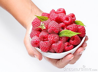 Crockery with raspberries in woman hands.