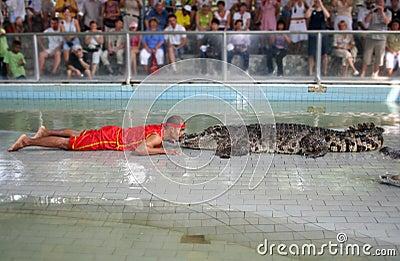 Crocodile Show Editorial Stock Photo