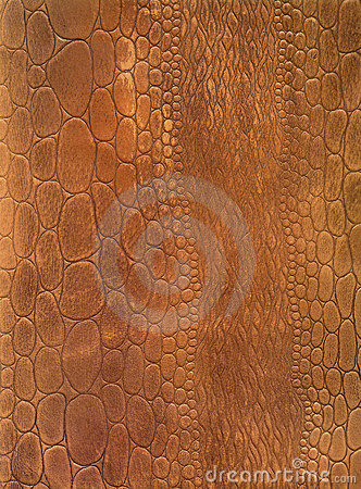 Free Crocodile Skin Leather Texture Royalty Free Stock Images - 3497739