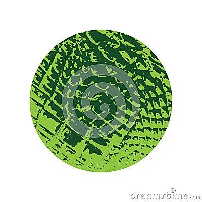 Crocodile texture frame Vector Illustration