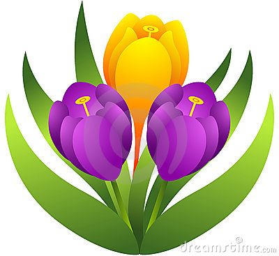 Crocus Flowers Royalty Free Stock Photos - Image: 20341898