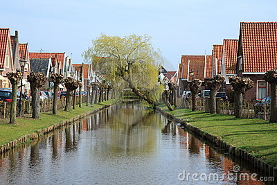 Crooked weeping willow over canal
