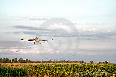 Crop Duster Spraying Corn Field