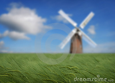 Crops and windmill