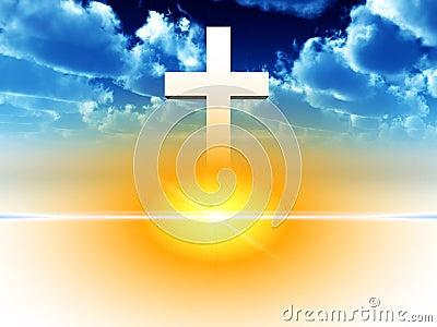 The Cross 26