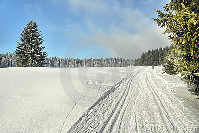 Cross-country ski