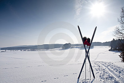 Cross country ski trail with ski