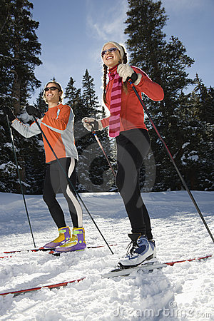 Cross Country Snow Skiiers