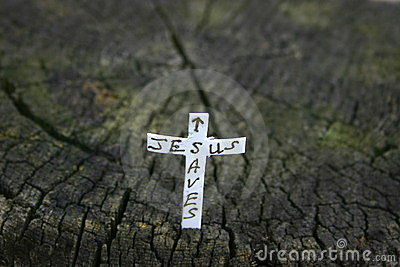 Cross in a log