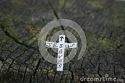 Cross in a log