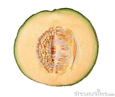 Cross section of a rockmelon