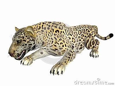 Crouching Jaguar