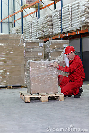 Free Crouching Worker Wrapping Box On Pallet Stock Photography - 16349012