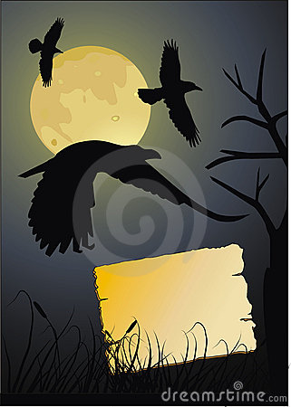 Crow in the dark night