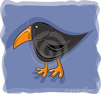 Crow with orange beak