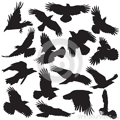 Free Crow Silhouette Set 02 Royalty Free Stock Photography - 35632087