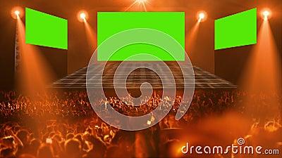 Crowd Concert stage light. Concert stage 3d light HD 1080