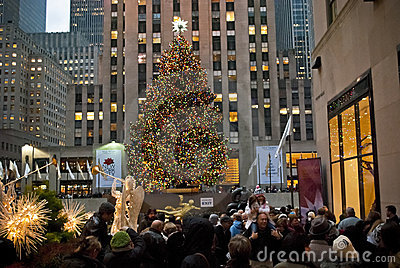 Crowd and Tree Editorial Image
