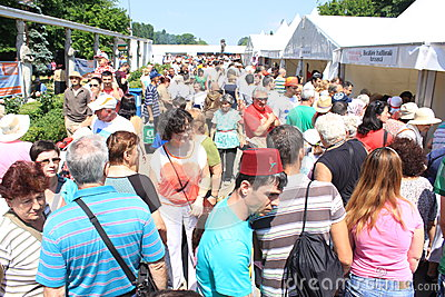 Crowd at turkish festival Editorial Stock Photo