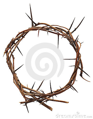 Free Crown Of Thorns Royalty Free Stock Photography - 11918877