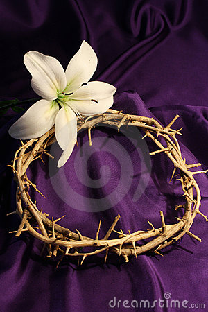 Crown of Thorns with Lily