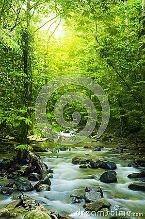 Córrego de Moutain