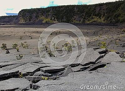 Crumpled Volcano Rock