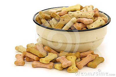 Crunchy dog food in an enamel bowl