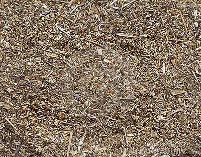 The crushed dried up curative grass.