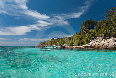 Crystal Clear Water Jungle Edge Horizontal