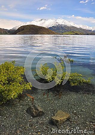 Crystal Clear Water, Lake Wanaka New Zealand