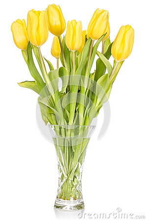 Free Crystal Vase With Yellow Tulips Royalty Free Stock Photos - 29325758