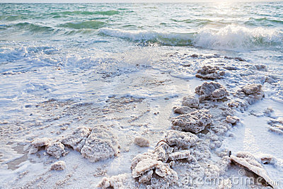 Crystalline salt on beach of Dead Sea - 4