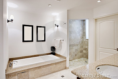 Cuarto de baño con la tina y la ducha