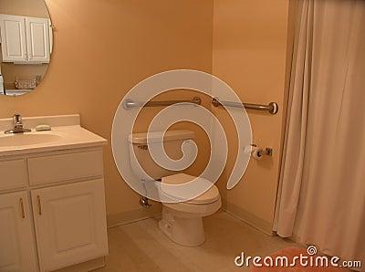 Cuarto de baño con las barras de gancho agarrador