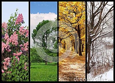 Cuatro estaciones sueltan, verano, otoño, invierno
