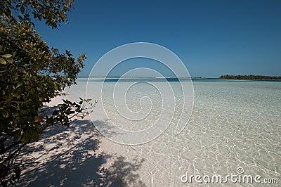 Cuba, tropical beach