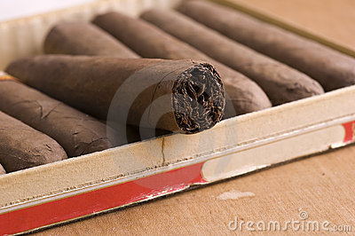 Cuban Cigars in box
