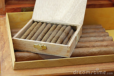 Cuban cigars in a humidor