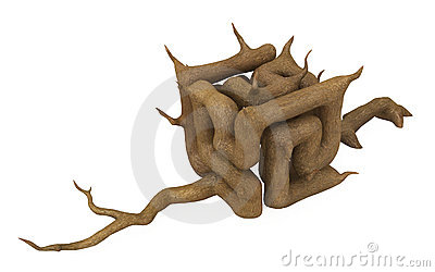 Cube Twisted Branch