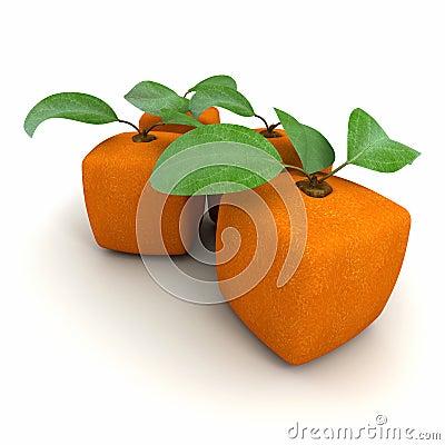 Cubic orange duo