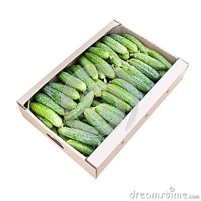 Cucumbers.