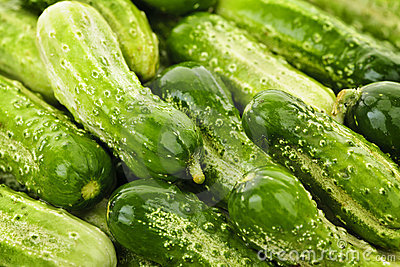 Cucumbers background