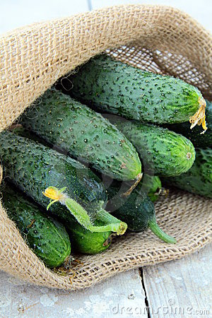 Cucumbers in a linen bag