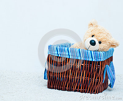 Cuddly toy bear in the webbed basket