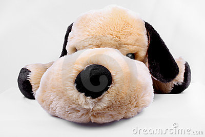 Cuddly Toy Dog