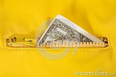 Cuenta de dólar en la cremallera